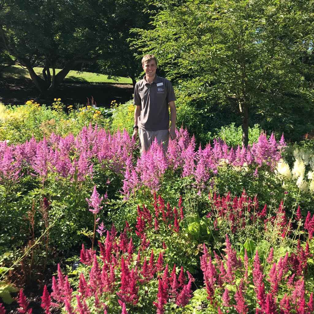 James Miller with Astilbe Collection (Copyright Peter Goodchild)
